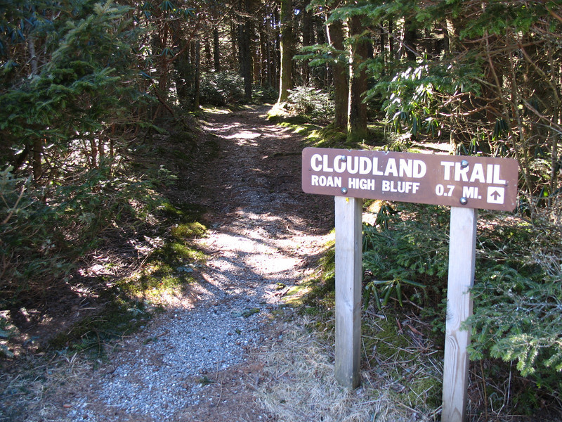 Following the Cloudland Trail
