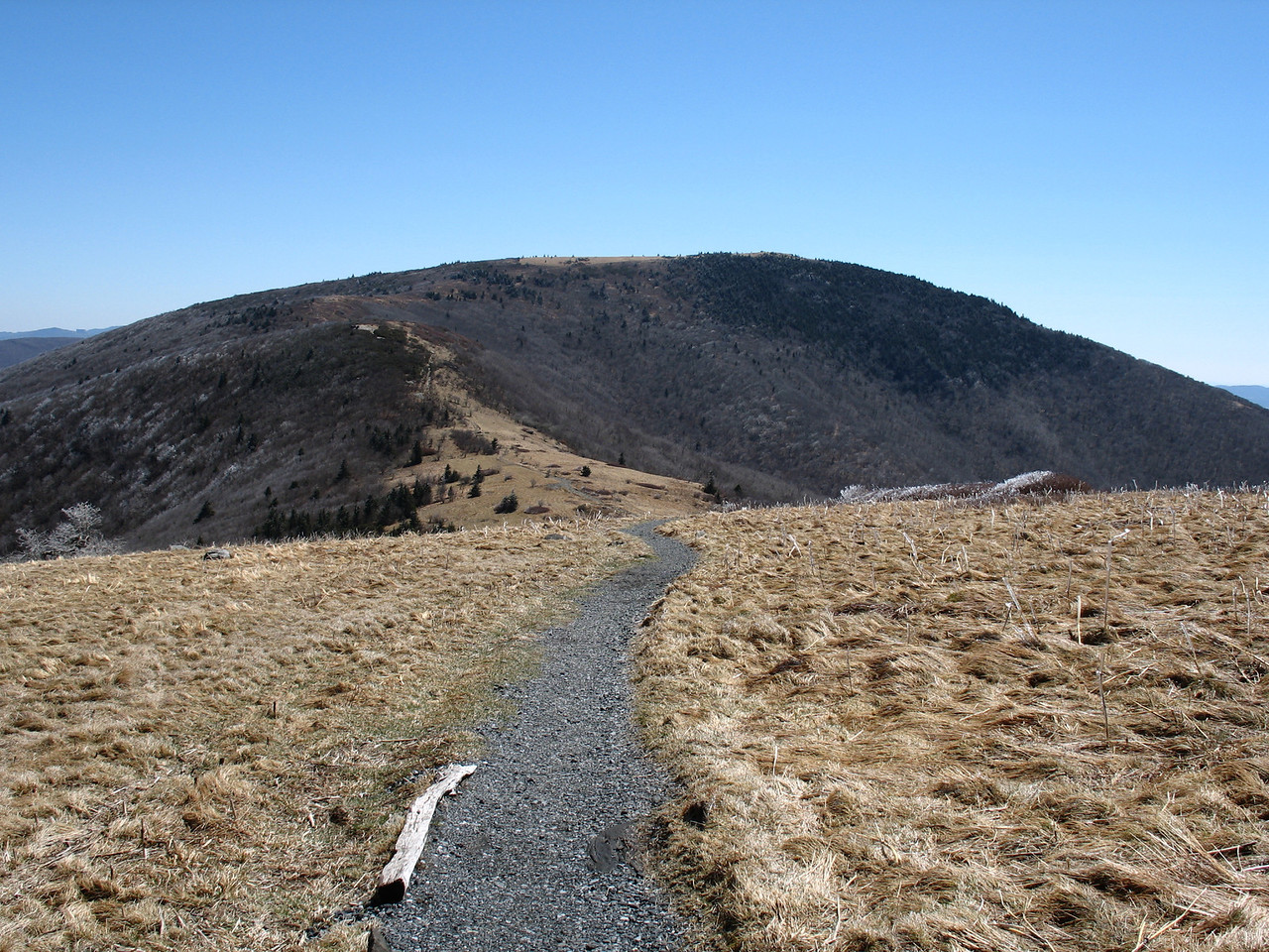 The nice gravel trail over Round Bald hints at the crowds that must visit here in the warmer months.