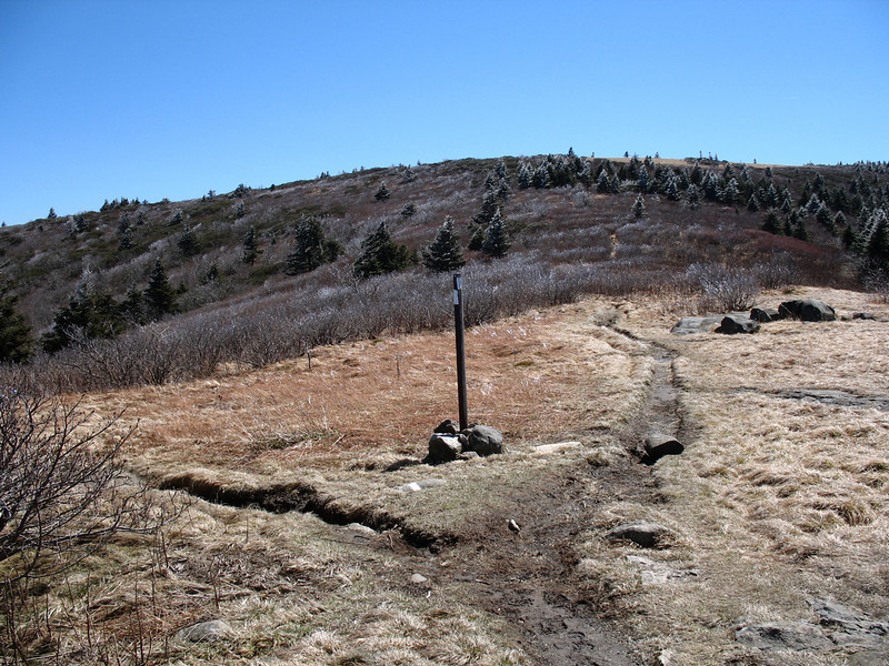 The AT splits left here as the summit spur heads right.