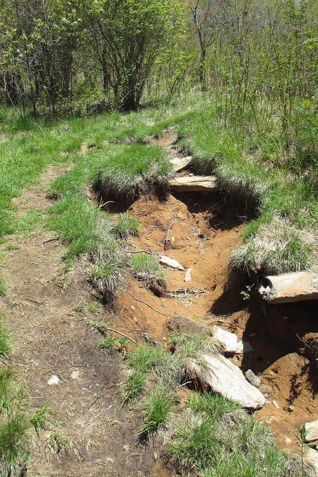 Sam Knob Trail - 5,550'