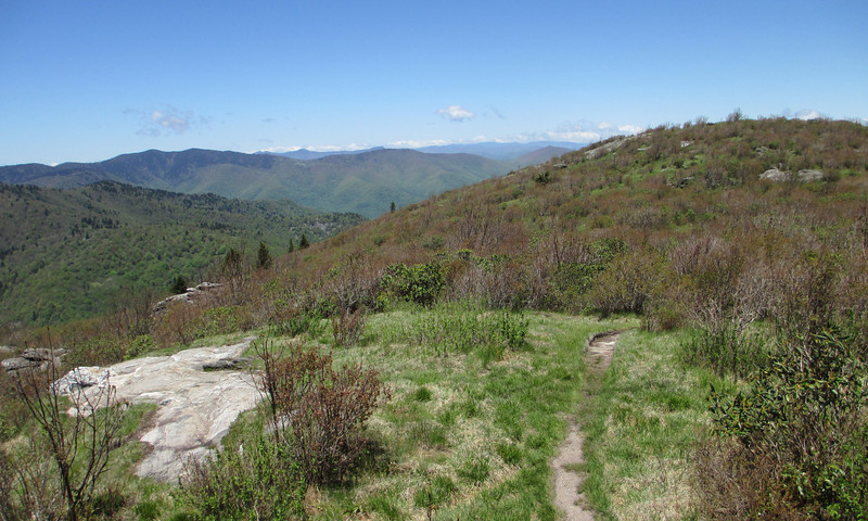 Sam Knob Summit (South Summit) - 6,050'