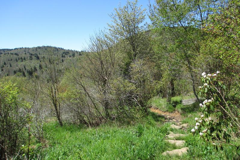 Sam Knob Trail - 5,560'