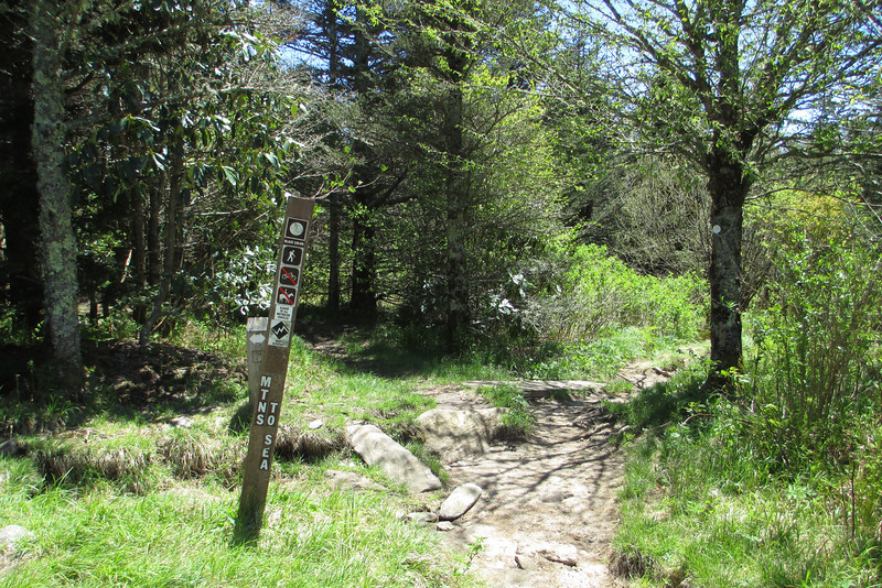 Little Sam Knob-Mountains-to-Sea Trail Junction