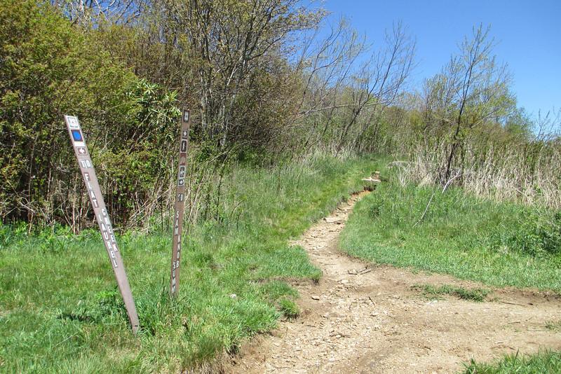 Sam Knob Trail - 5,640'