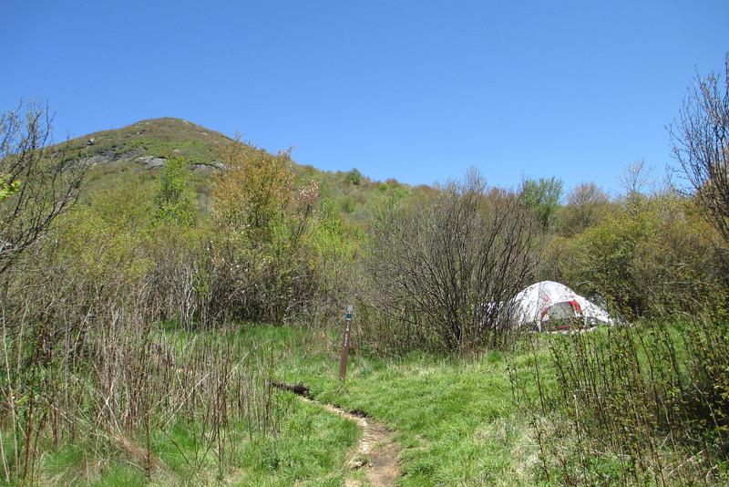 Sam Knob Trail - 5,540'