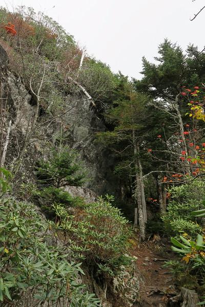 Black Mountain Crest Trail -- 6,580'