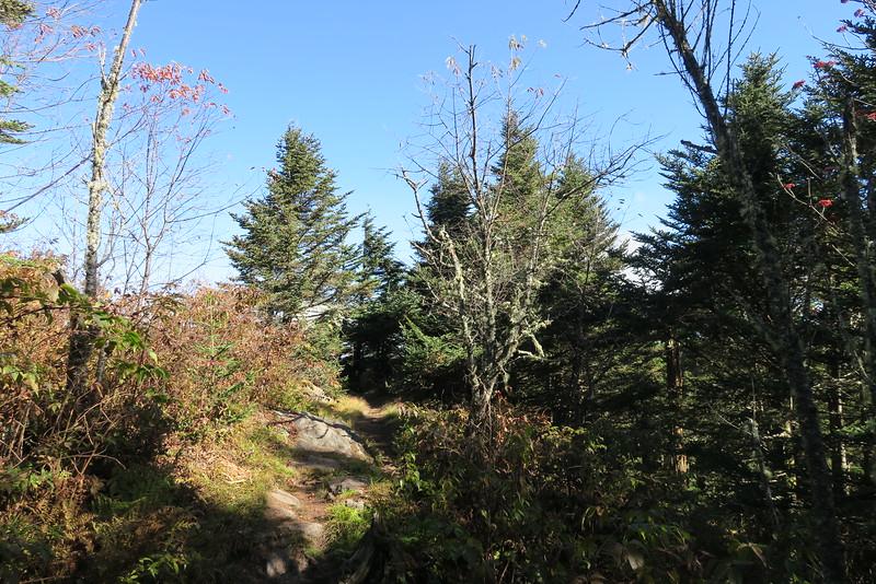 Black Mountain Crest Trail -- 6,600'