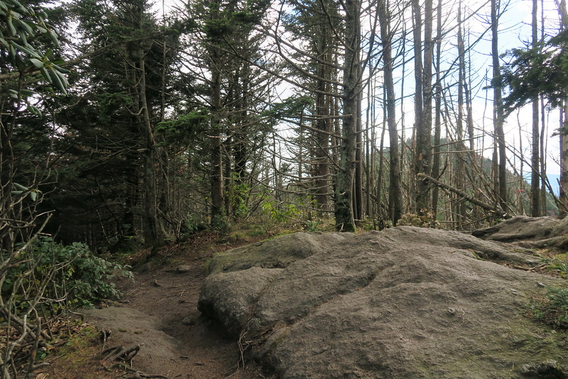 Big Tom Mountain -- 6,580'