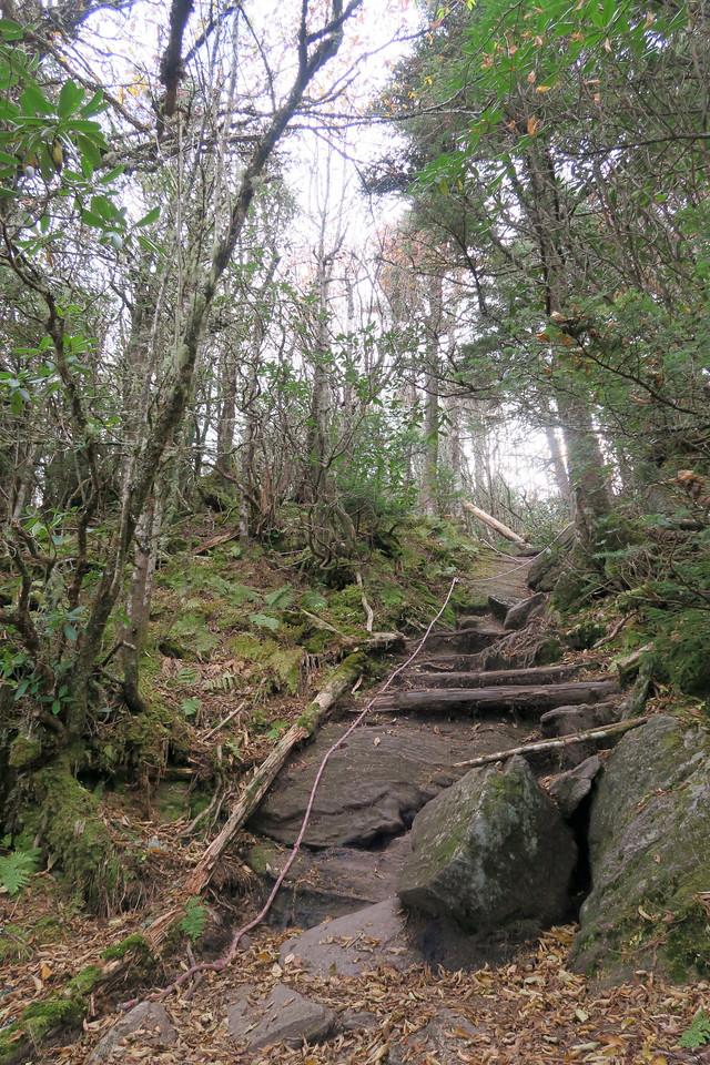 Black Mountain Crest Trail -- 6,400'