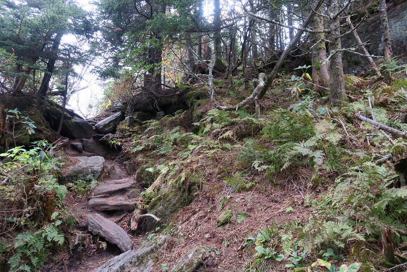 Black Mountain Crest Trail -- 6,240'