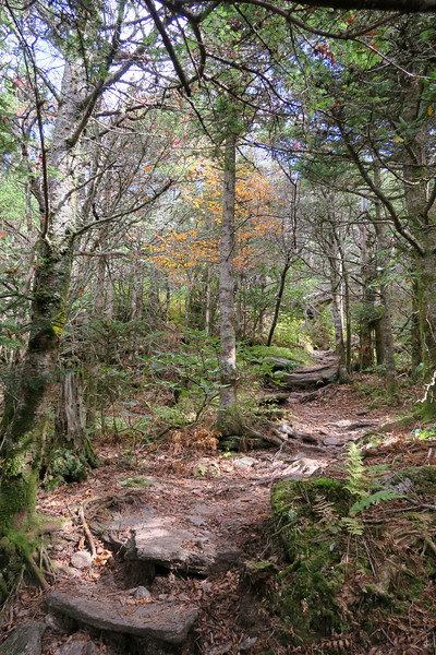 Black Mountain Crest Trail -- 6,350'