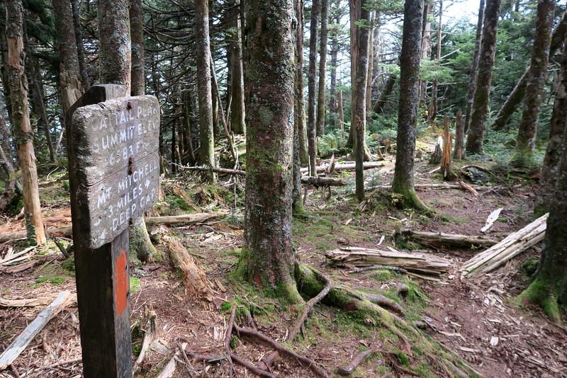 Black Mountain Crest Trail -- 6,583'