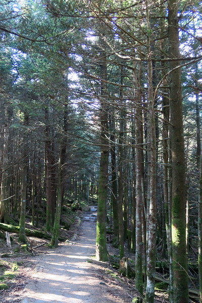 Black Mountain Crest Trail -- 6,500'