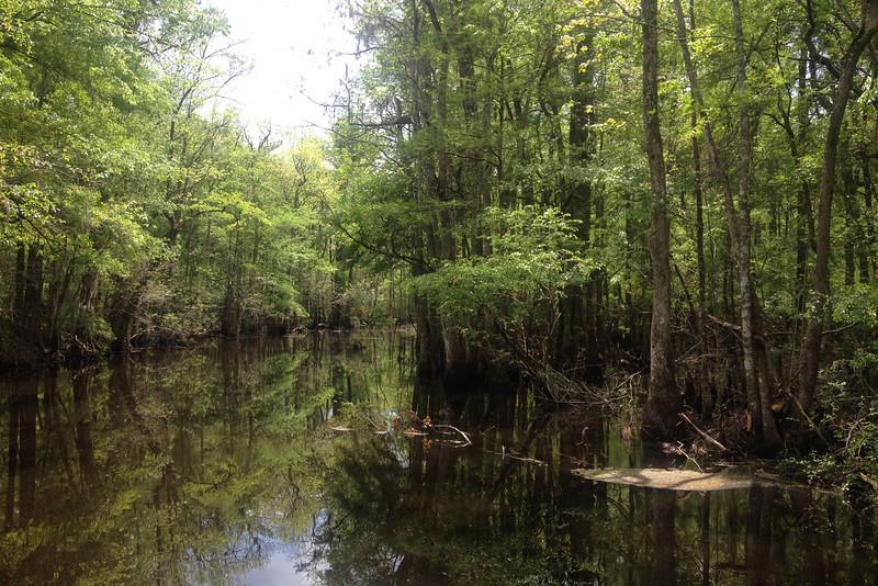 Goodson Lake...