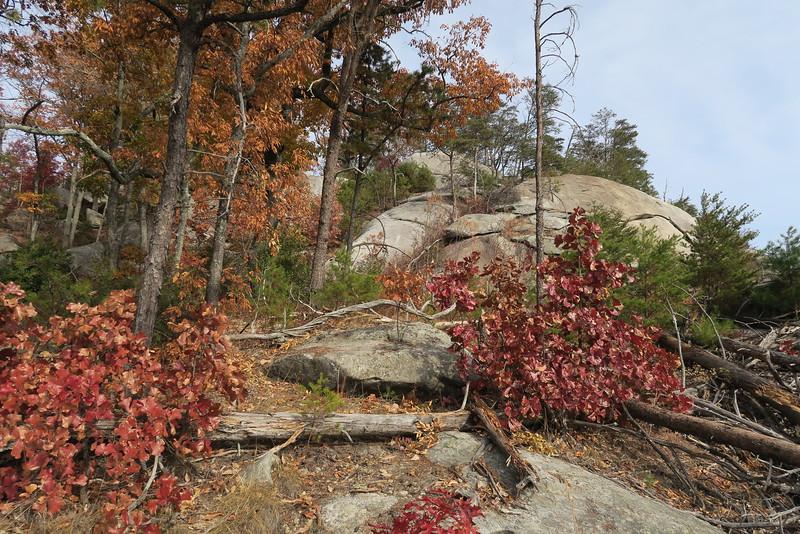 South Face Boulderfields -- 1,620'