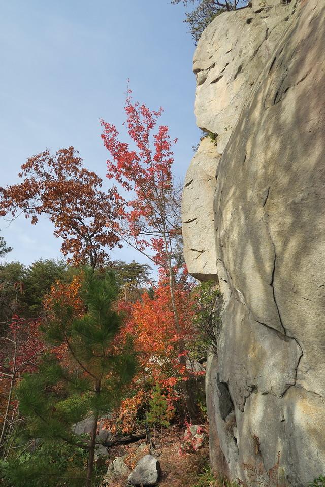 Big Rock Mountain Trail -- 1,500'