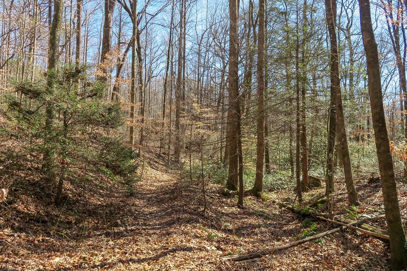 Naturaland Trust Trail -- 1,500'