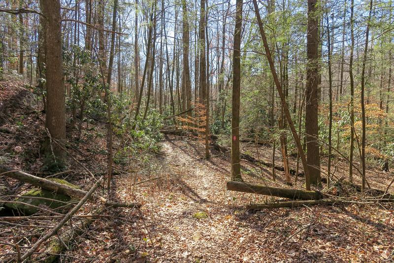 Naturaland Trust Trail -- 1,490'