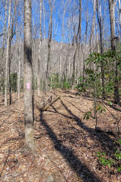 Naturaland Trust Trail -- 1,670'