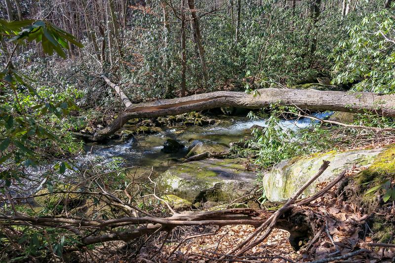 Matthews Creek -- 1,620'