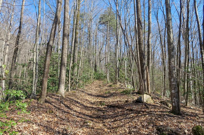 Naturaland Trust Trail -- 1,700'