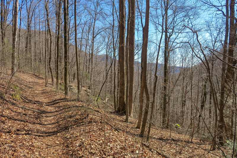 Dismal Trail -- 2,000'