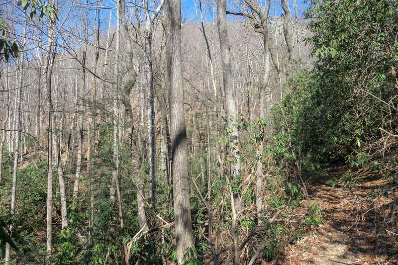Naturaland Trust Trail -- 1,780'