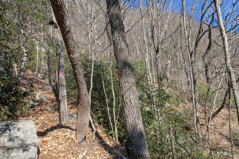 Naturaland Trust Trail -- 2,230'
