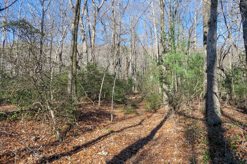 Naturaland Trust Trail -- 2,700'