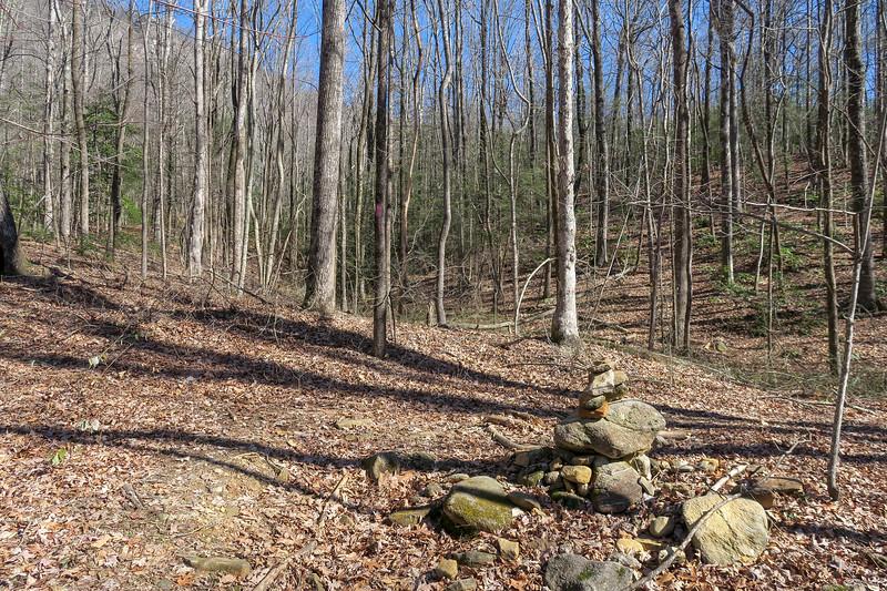 Naturaland Trust Trail @ Moonshine/Confusion Falls Path -- 1,640'
