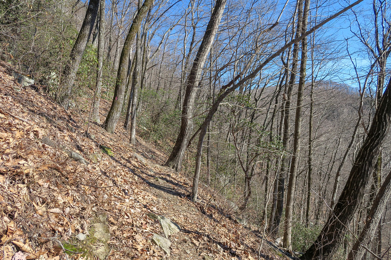 Naturaland Trust Trail -- 2,330'