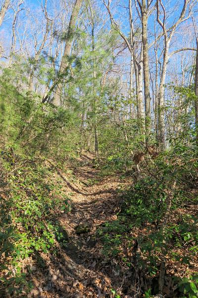 Naturaland Trust Trail -- 2,750'