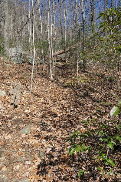 Naturaland Trust Trail -- 2,080'