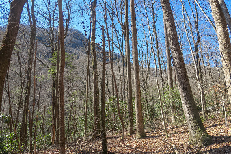 Dismal Trail -- 1,730'