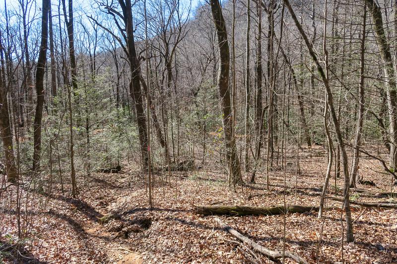 Naturaland Trust Trail -- 1,540'