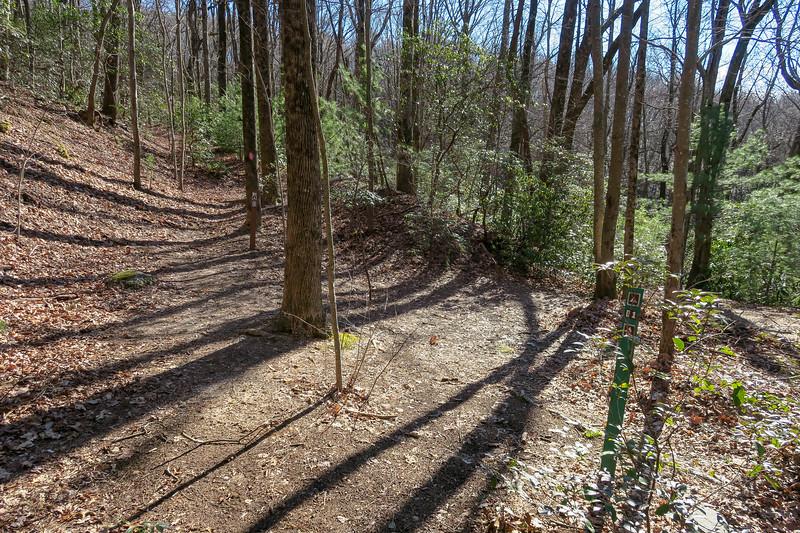 Naturaland Trust Trail @ Campsite #D1 -- 2,620'