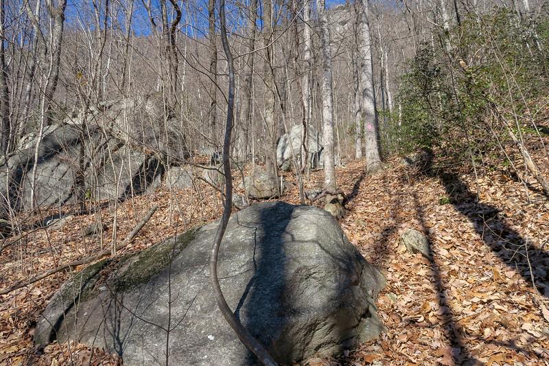 Naturaland Trust Trail -- 2,000'