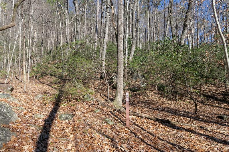 Naturaland Trust Trail # Campsite #D2 -- 1,920'