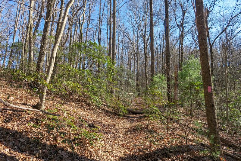 Naturaland Trust Trail -- 2,620'