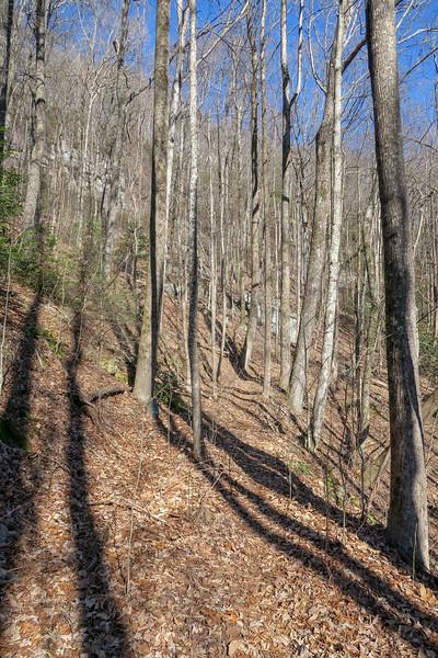 Naturaland Trust Trail -- 2,520'