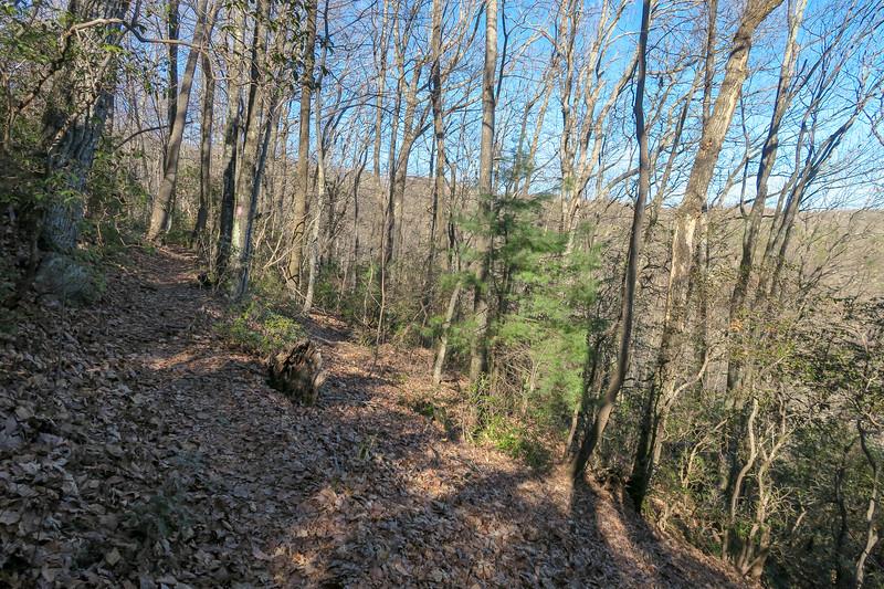 Naturaland Trust Trail -- 2,920'