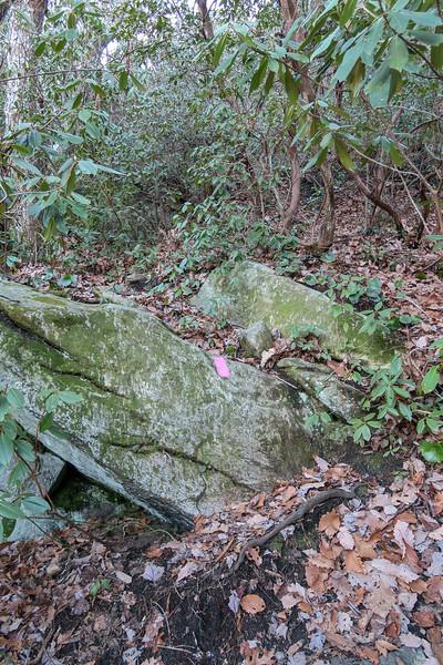Naturaland Trust Trail -- 2,850'
