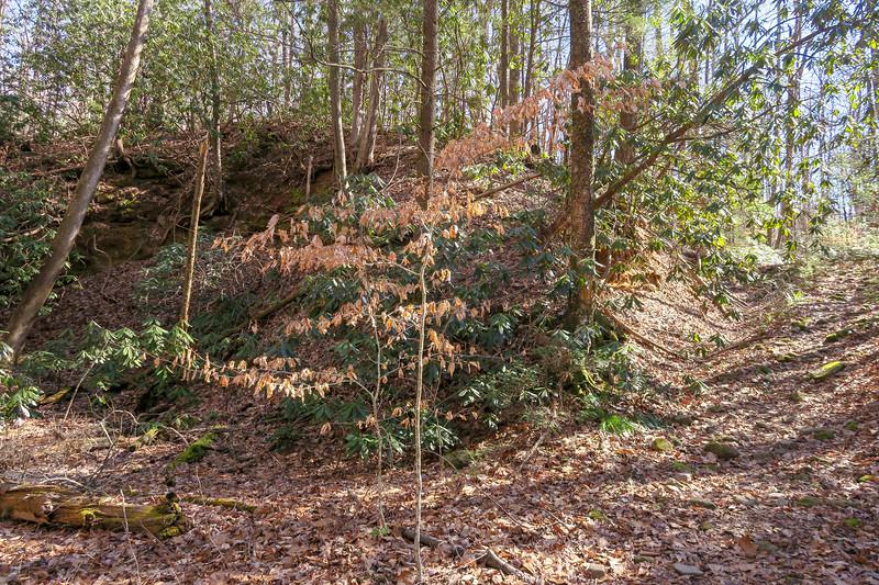 Naturaland Trust Trail -- 1,520'