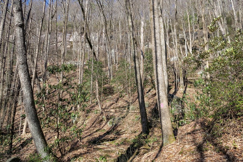 Naturaland Trust Trail -- 2,580'