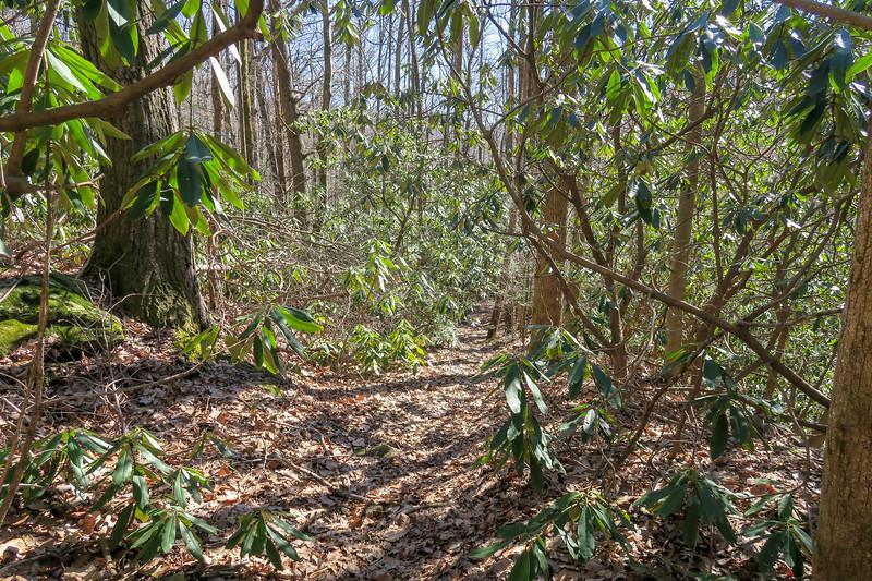 Naturaland Trust Trail -- 1,680'
