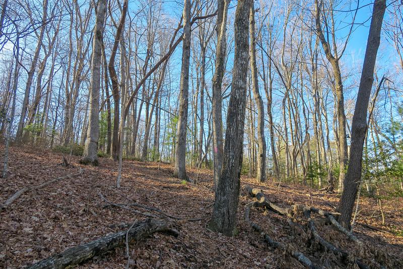 Naturaland Trust Trail -- 2,950'