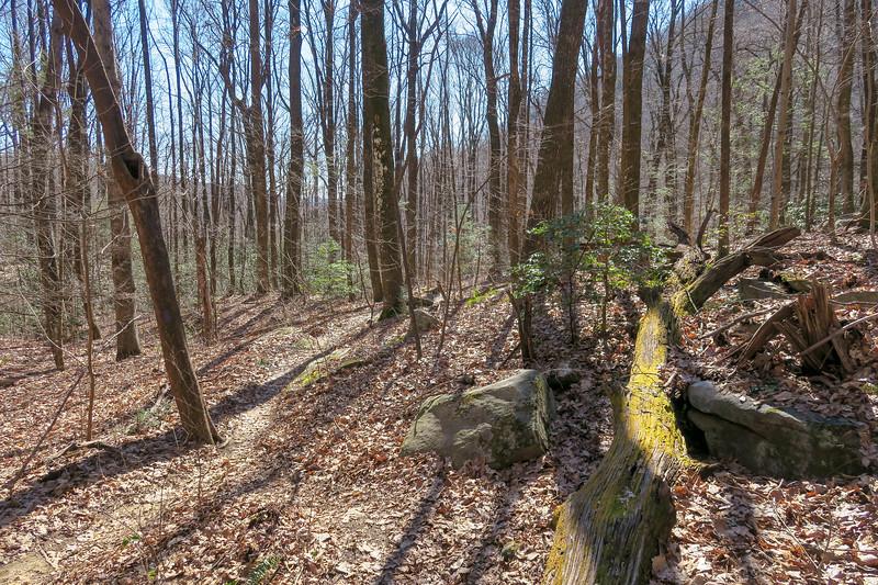 Dismal Trail -- 1,760'