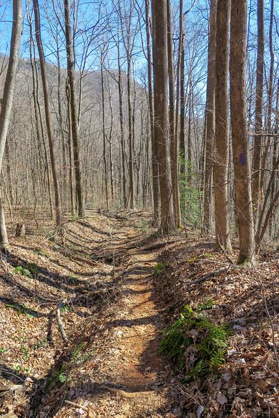 Dismal Trail -- 1,900'