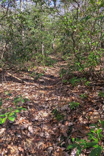 Naturaland Trust Trail -- 1,830'