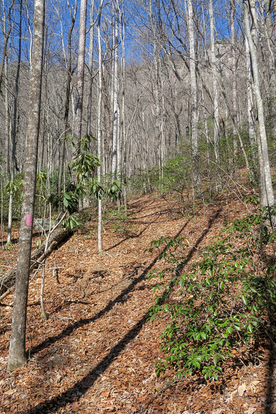 Naturaland Trust Trail -- 1,950'